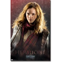 Hermione Granger Deathly Hallows Part 1 Movie Poster