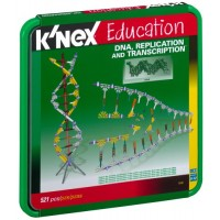DNA, Replications and Transcription Set