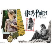 Hermione Granger Deathly Hallows Wall Decal