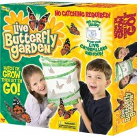 Live Butterfly Garden