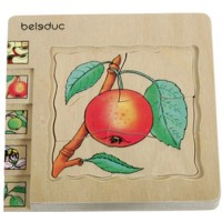 Seed to Apple Puzzle